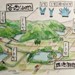 池のタイプ説明図